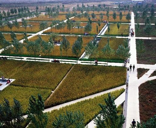 Shenyang Architectural University Campus   TURENSCAPE (Image courtesy of Prof. Kongjian Yu)