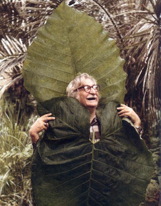 Roberto Burle Marx [source; themanjournal.tumblr.com]