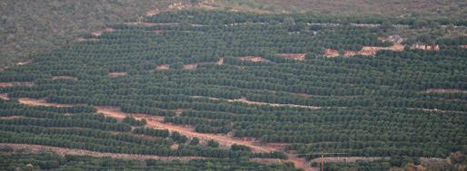 Portimão to Alte   August 16, 2010