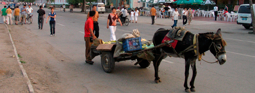 Informal Market Worlds | Shenyang, 2006
