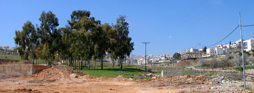 Ongoing construction of a public park in Beit Sahour   Bethlehem, March 4, 2008